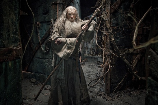The Hobbit: The Desolation of Smaug, Ian McKellan