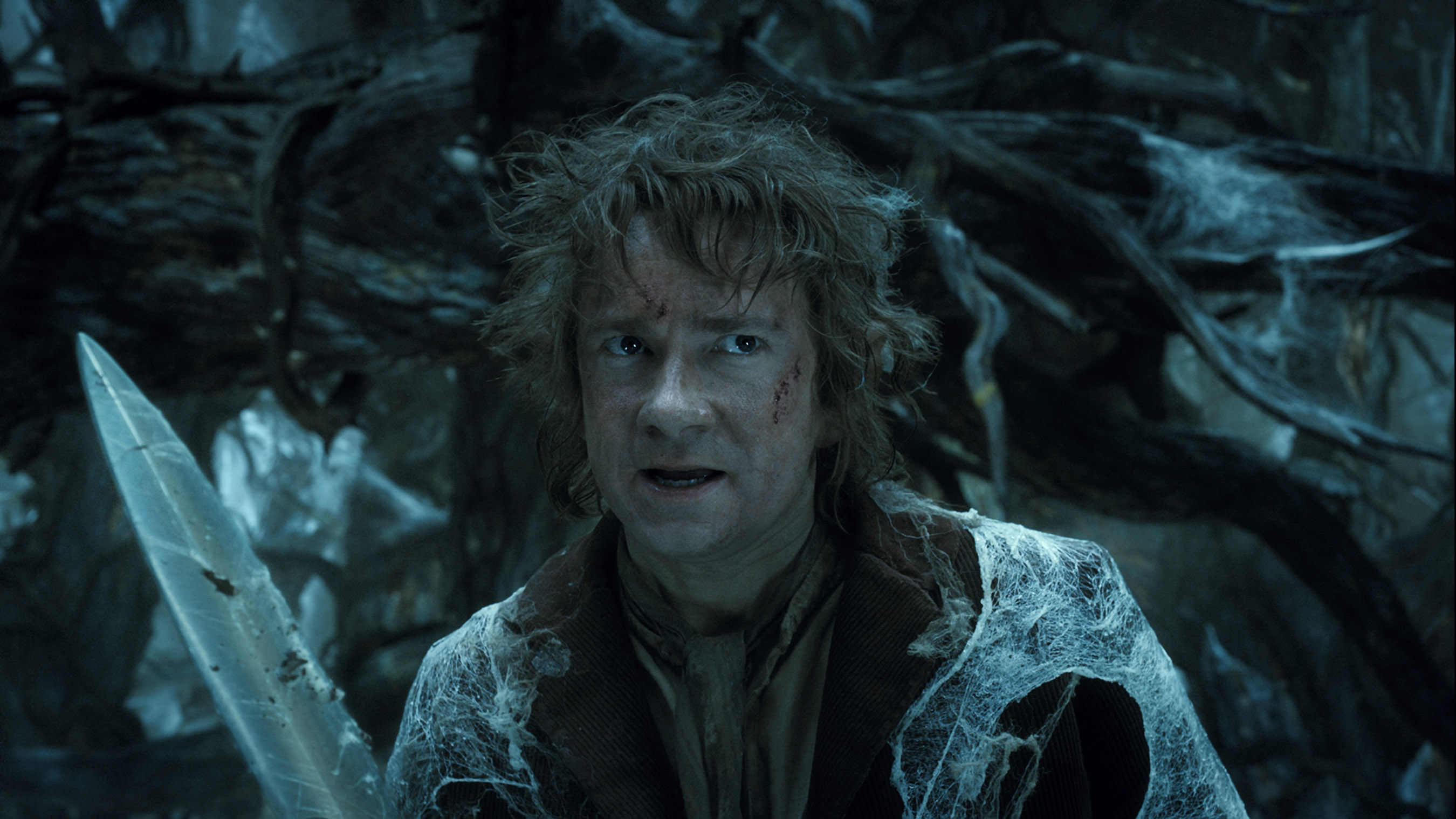 The Hobbit The Desolation Of Smaug 2013 Toomuchnoiseblog